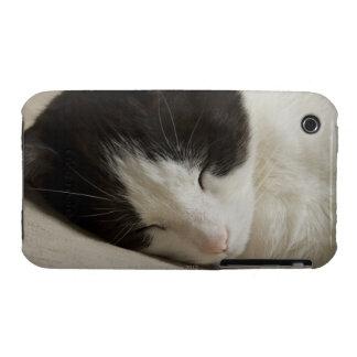 Detalle del retrato de dormir del gato nacional funda para iPhone 3