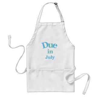 Deuda del azul en julio delantal