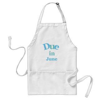 Deuda del azul en junio delantal