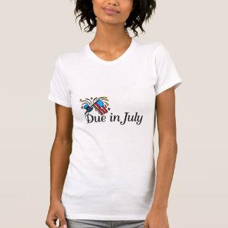 Deuda en julio (bandera) camiseta