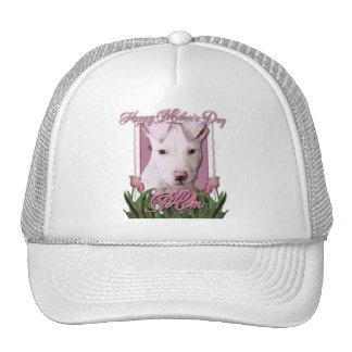 Día de madres - tulipanes rosados - perrito de Pit Gorros