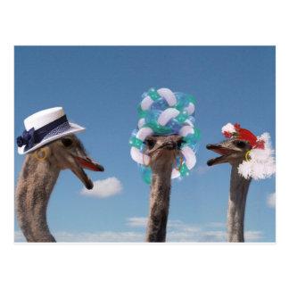 Día loco del gorra en las razas postal