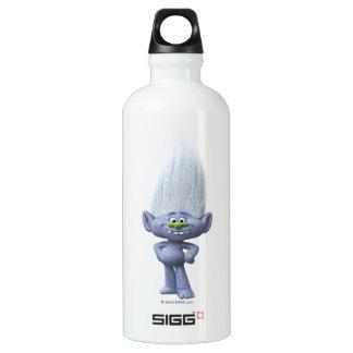 Diamante del individuo de los duendes el | botella de agua