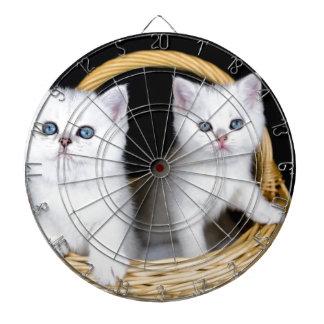 Diana Dos gatitos blancos en cesta en background.JP