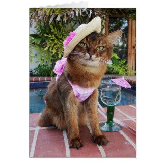 Días de verano que ofrecen verano el gato tarjeta de felicitación