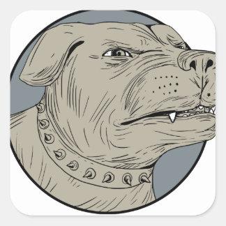 Dibujo agresivo de la cabeza de perro guardián de pegatina cuadrada
