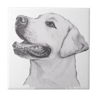 Dibujo clásico del perfil del perro del labrador azulejo cuadrado pequeño