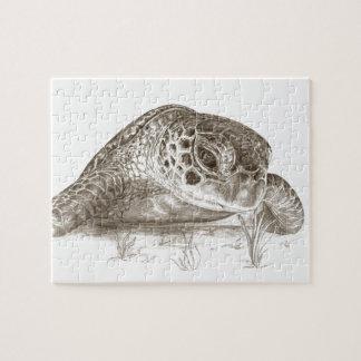 Dibujo de la tortuga de mar verde puzzle