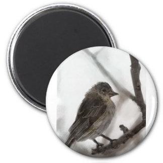 Dibujo del pájaro imán redondo 5 cm