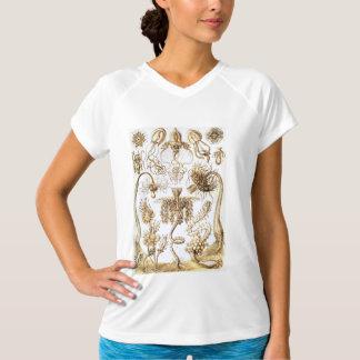 Dibujos de la biología de Ernst Haeckel Camiseta