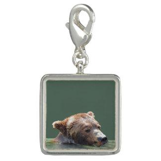 Dije encanto cuadrado con el oso grizzly