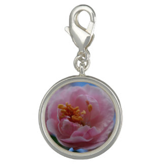 Dijes Flor rosado de la primavera