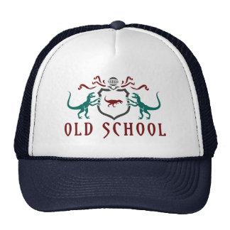 Dinosaurio del color de la escuela vieja gorros bordados