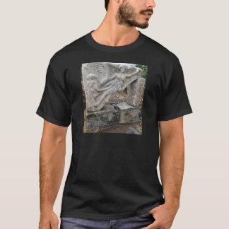 Diosa griega Nike en Ephesus, Turquía Camiseta
