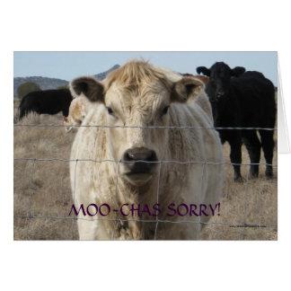 Disculpa blanca negra divertida de la vaca del MOO Tarjeta De Felicitación