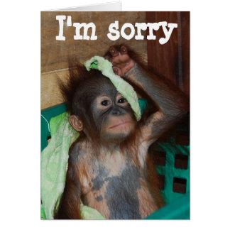 Disculpa lo siento tarjeta de felicitación