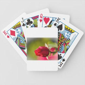 Diseño ascendente del cierre del rosa rojo baraja de cartas bicycle