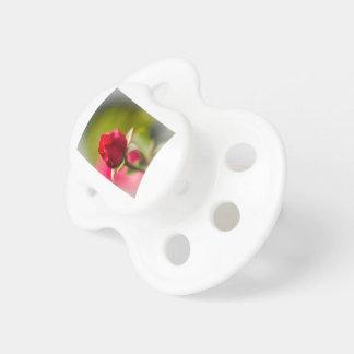 Diseño ascendente del cierre del rosa rojo chupete