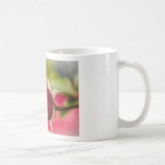 Diseño ascendente del cierre del rosa rojo taza de café
