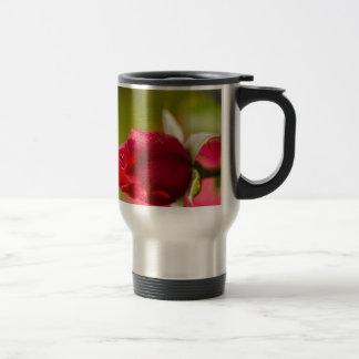 Diseño ascendente del cierre del rosa rojo taza de viaje