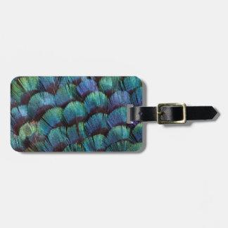 Diseño azulverde de la pluma del faisán etiquetas para maletas