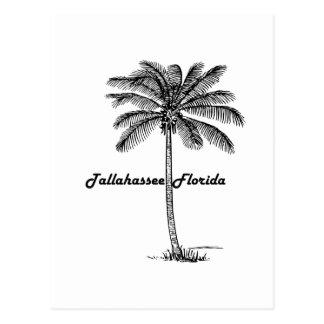 Diseño blanco y negro de Tallahassee y de la palma Postal