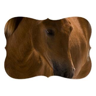 Diseño del caballo de la castaña comunicados personales