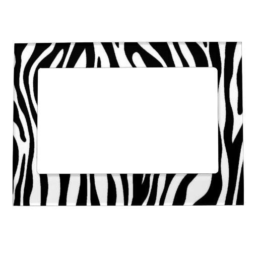 Diseño del estampado de zebra marcos magneticos de fotos