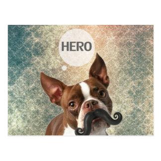 Diseño divertido de la foto del perro del bigote postal