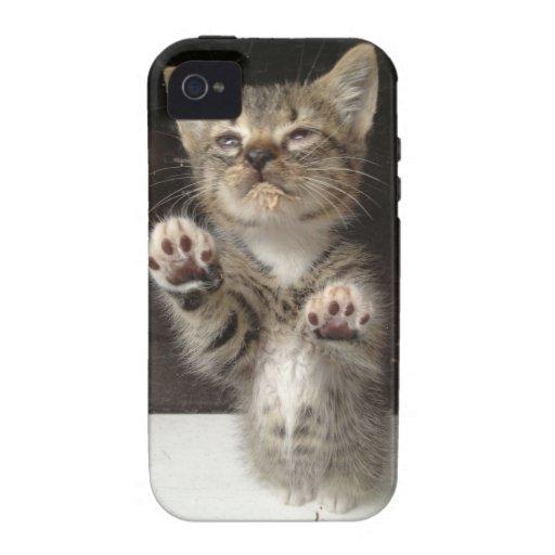 Diseño lindo del gatito iPhone 4 carcasas