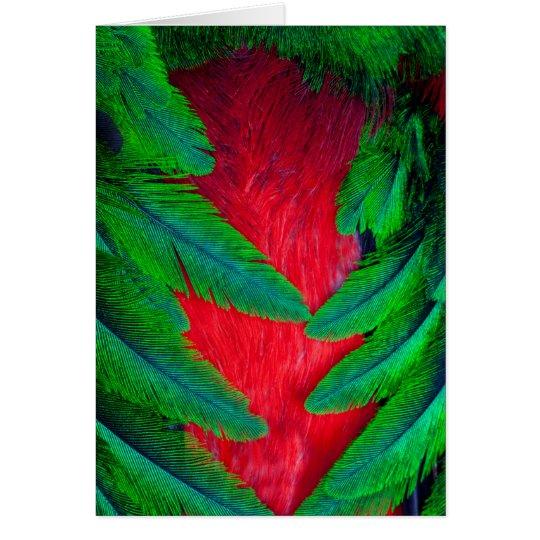 Diseño resplandeciente de la pluma del quetzal tarjeta de felicitación