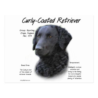 Diseño Rizado-Revestido de la historia del perro Postal