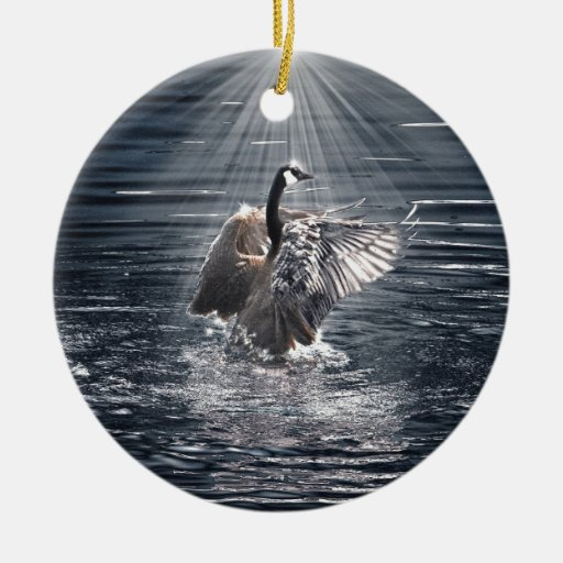 Diseño salvaje del pato del Pájaro-amante de la Ornato