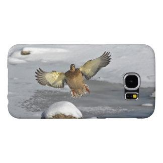 Diseño salvaje del pato del Pájaro-amante de la Fundas Samsung Galaxy S6