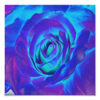 Diseños florecientes del bulbo de las flores fotografías