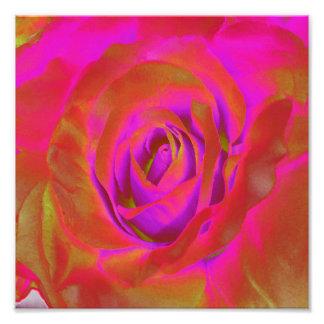 Diseños florecientes del bulbo de las flores rojas impresión fotográfica