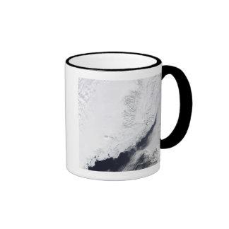 Diversos tipos de hielo marino taza