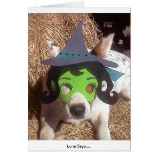 Divertido diversión perro Halloween bruja Lun Tarjeta