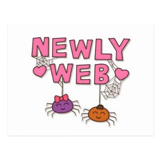 Divertido los Web spider casese nuevamente o Postal