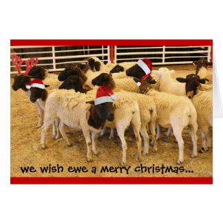 Divertido, oveja del deseo Felices Navidad, ningun Tarjeta De Felicitación