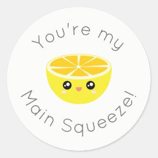 Divertido usted es mi humor principal del limón de pegatina redonda