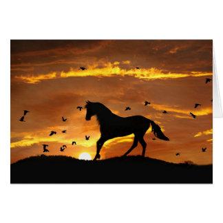 divorcio Encouargement del caballo Tarjetón