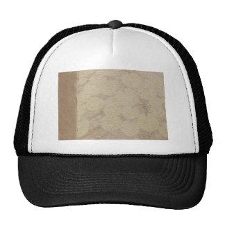 DIY: Plantilla al gorra de los gorras del