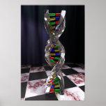 DNA del vidrio Póster