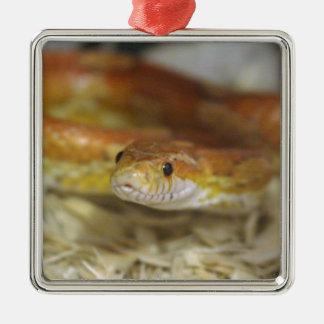 DO la serpiente Adorno Navideño Cuadrado De Metal