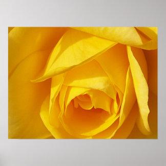 Dobleces del amarillo póster