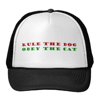 dog obey rule the the cat gorras