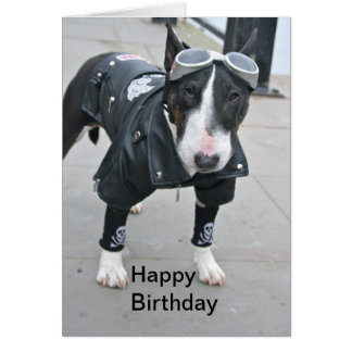 Dogo en tarjeta gótica del feliz cumpleaños del eq