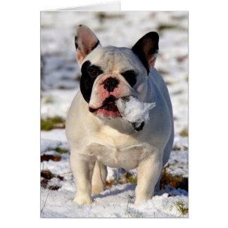 Dogo francés Susan de Howgillhounds Tarjeta De Felicitación