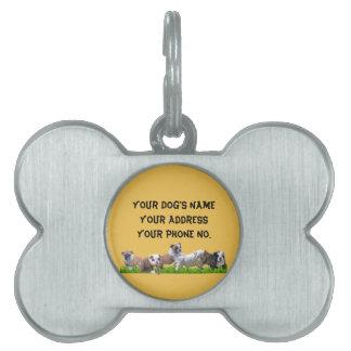 Dogo inglés placas de mascota